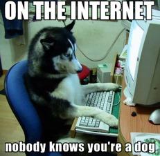 internet funny